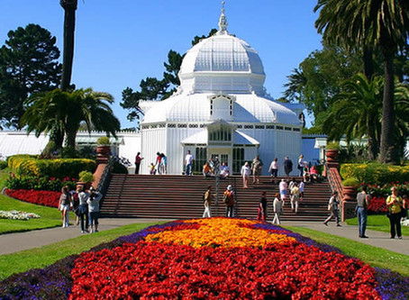 Conservatory of Flowers - San Francisco
