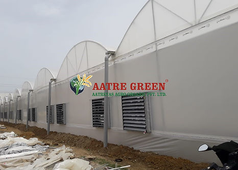 Fan Pad PH-AATRE GREEN.jpg