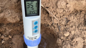 Soil & Water Test for New Site