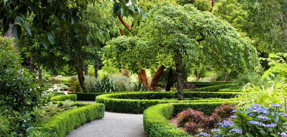 Dutch-Garden.jpg