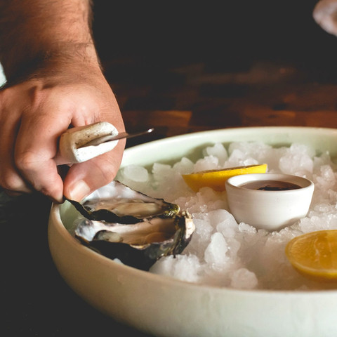 Daily Fresh Oysters.