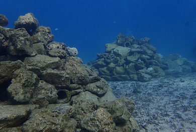 Reef-Doctor-Artificial-Reef.jpg