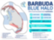 Q1 Newsletter Barbuda Blue Halo.png