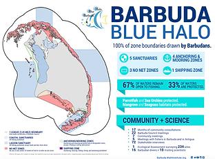 Q1 Newsletter Barbuda Blue Halo.png