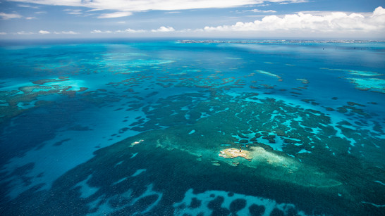 Bermuda Commits to Protecting 20% in New Marine Protected Areas