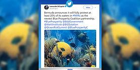 Leonardo-DiCaprio-Tweet-June-2019-2.jpg
