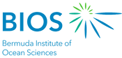 BIOS logo expanded.png