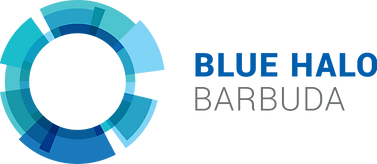 Blue Halo Barbuda Logo