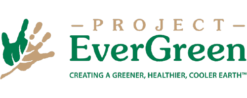 project-evergreen.png