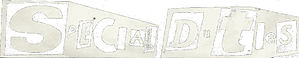 Special Duties Logo.png