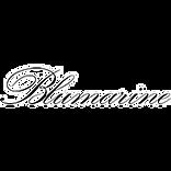 logo_fb_blumarine_edited.png
