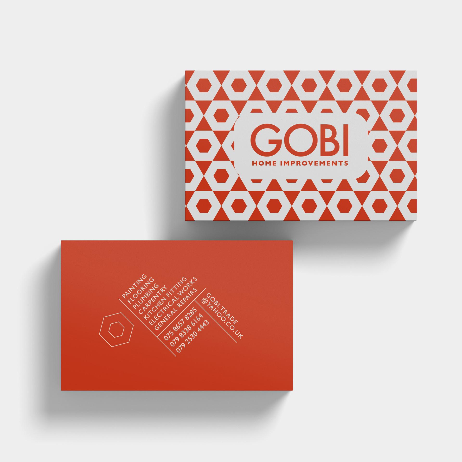 gobi1.JPG