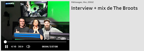metissage interview thebroots.png
