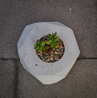 Concrete Planter Small