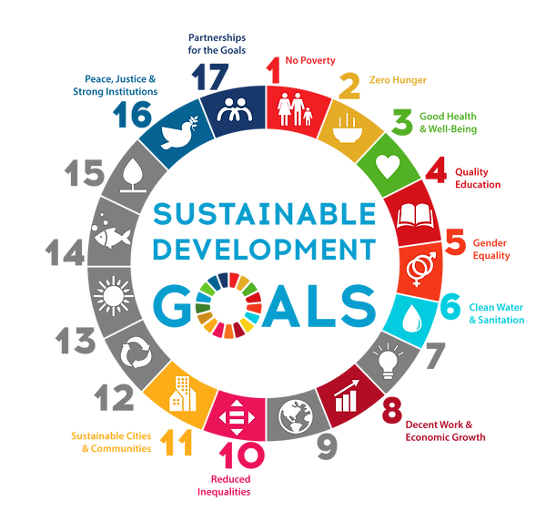 UN-Sustainable-goals-ppg.png