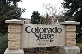 被隔離在 CSU 宿舍的學生在 COVID-19 檢測呈陰性後可以自由離開