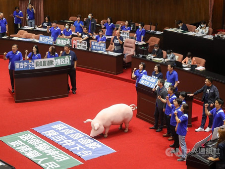 立院 25 日處理萊豬行政命令 藍綠發布甲動備戰