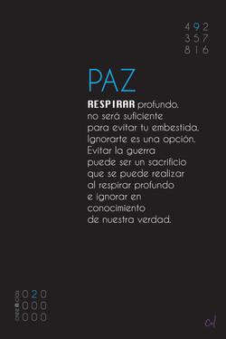 Paz 2 de 9