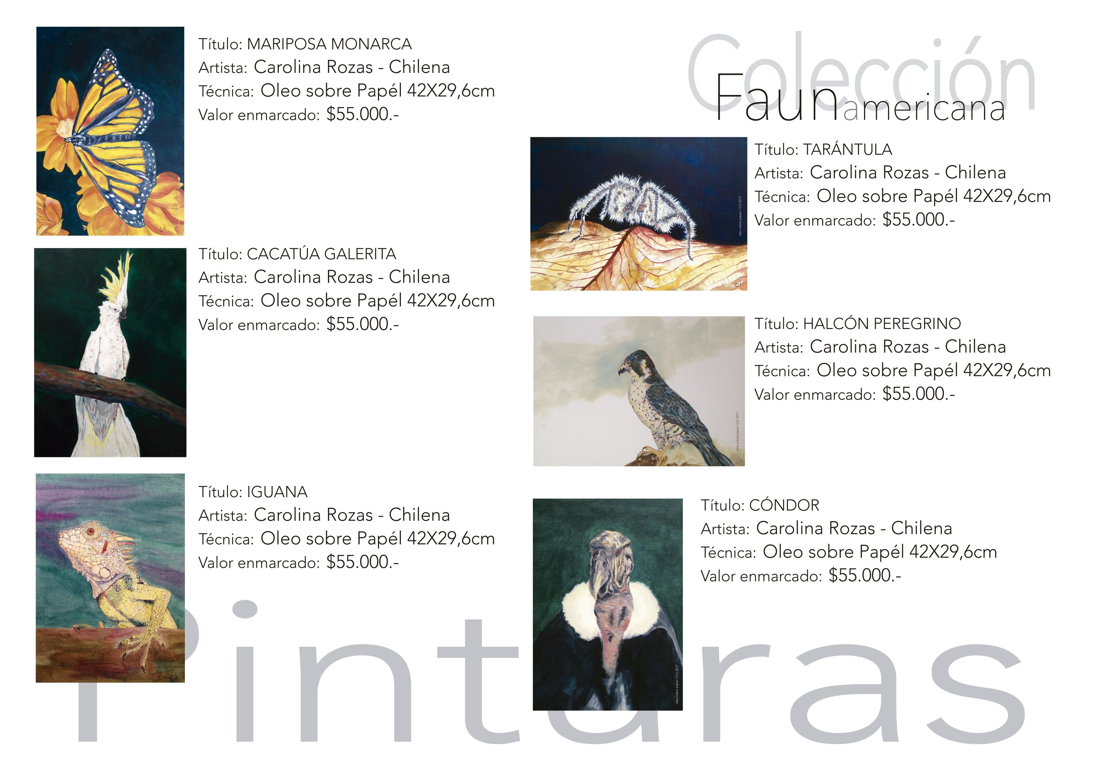 catalogo de precios-04