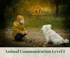 Animal Communication Level 1.jpg