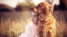 On Dogs, Dog Training and Mindfulness