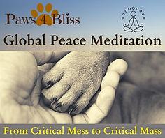 P4B Peace Meditation (6).jpg