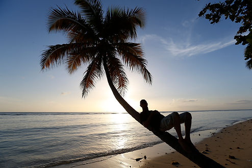 Man in silhouette sitting on palm tree on Caribbean beach