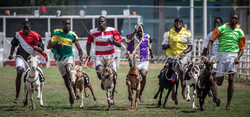 Annual goat racing