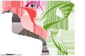 Hummingbird R.png