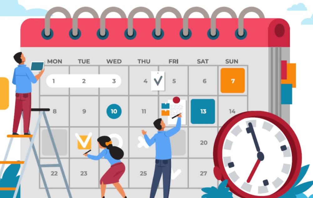 LMS Implementation Timeline