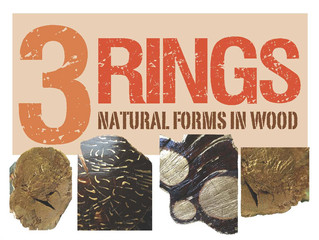 3 RINGS - Natural Forms in Wood