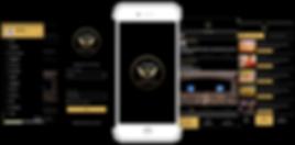 VIVO VIP Club app by Procialize