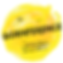 Goanfernce_App Icon.png