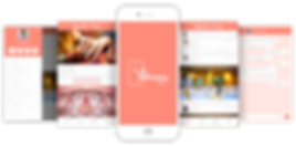 The Wedding App by Procialize