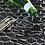 Thumbnail: ToughPRO Tesla Model S floor Mats Set - All Weather