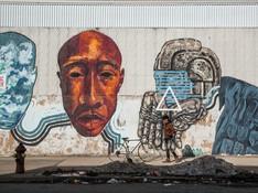 Newark Wall's