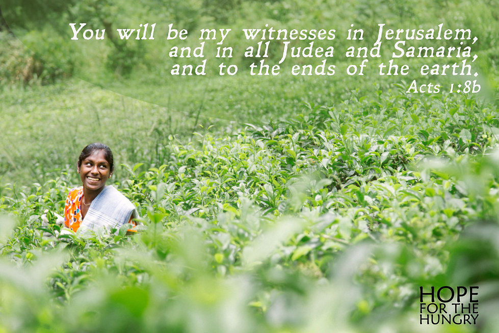 srilankaemailgraphic.jpg