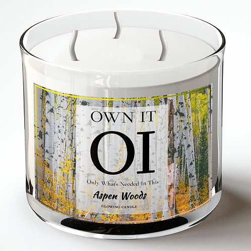3 Wick Candle -Aspen Woods