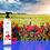 Thumbnail: Shower Gel - Sunshine Poppies
