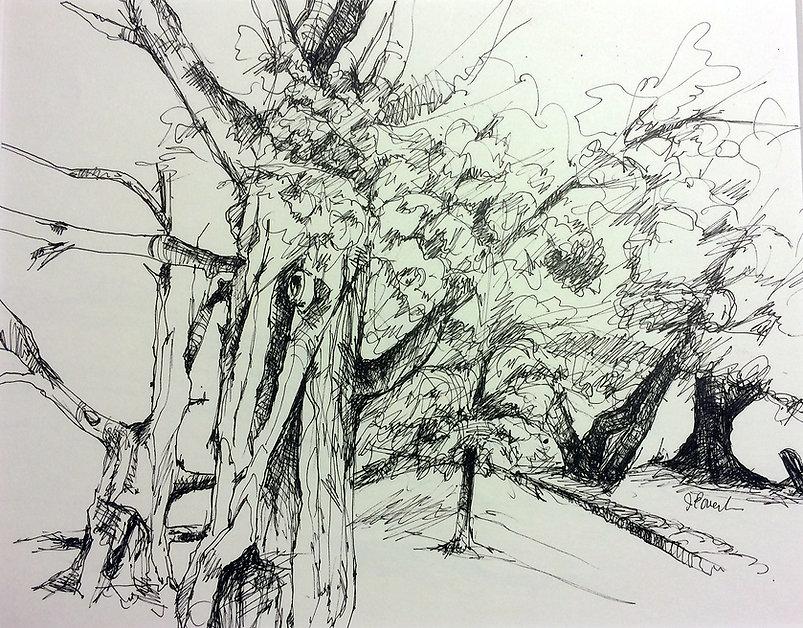 BMC Tree 4.jpg