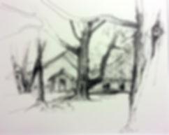 BMC Tree 5.jpg