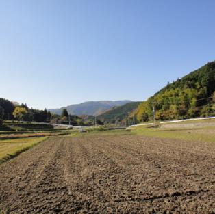 【終了】田んぼオーナー説明会+おためし農作業