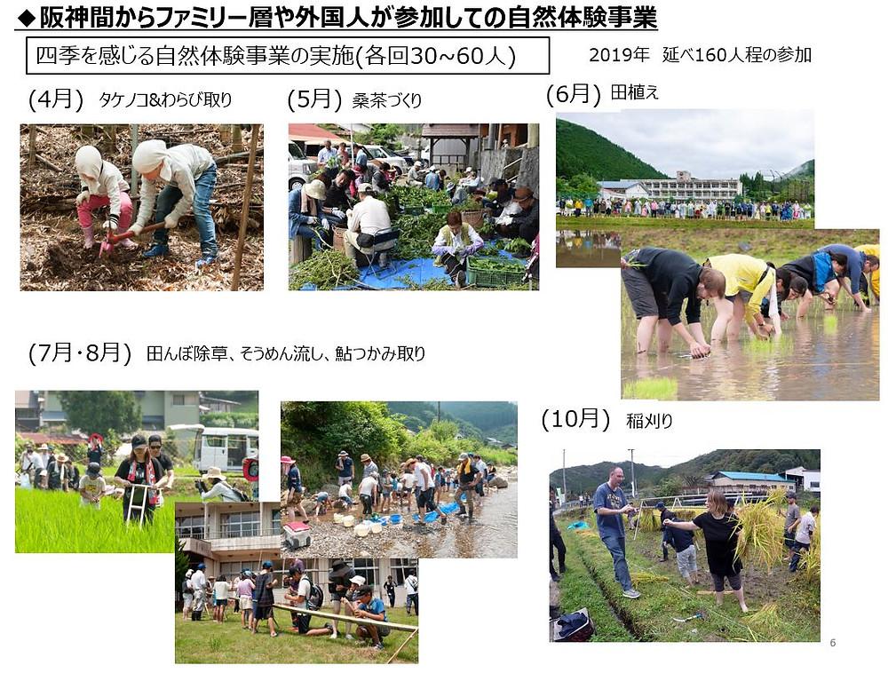 阪神間からファミリー層や外国人が参加しての自然体験事業