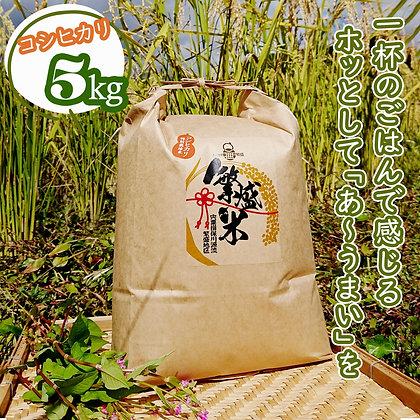 繁盛米(特別栽培米)5キロ