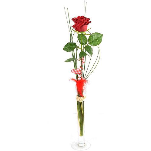 Vase + rose
