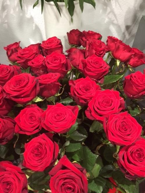 Rose rouge 50cm / 5 euros pièce
