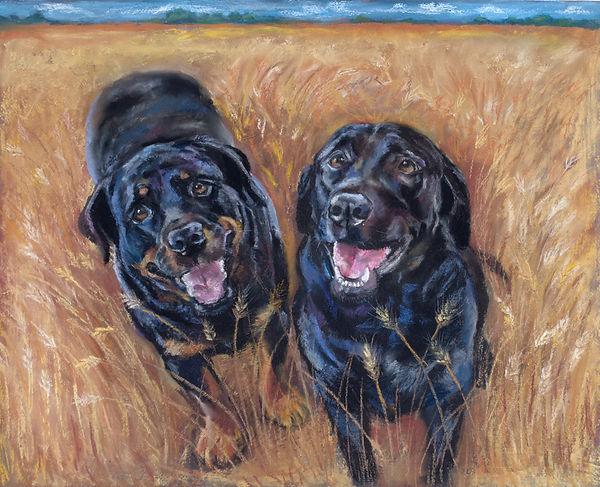 Penny's Dogs.jpg