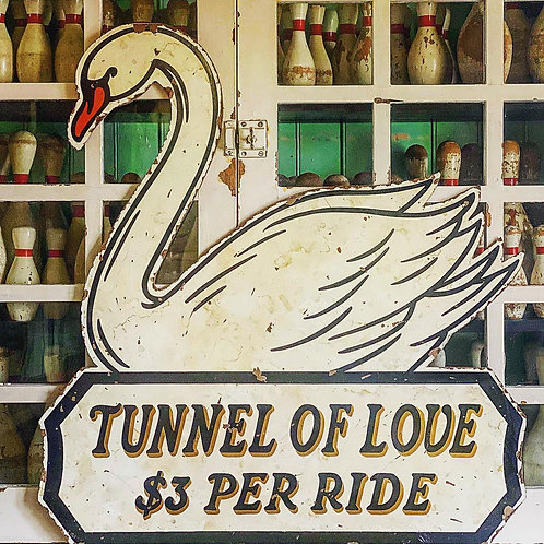 Swan Tunnel of Love
