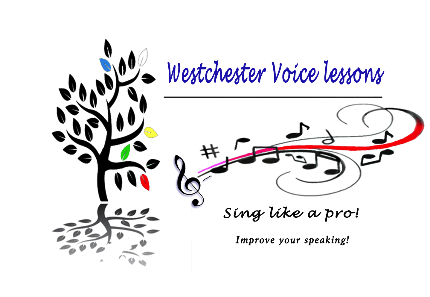 westchestervoicelessons
