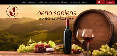web vin-bordeaux.JPG